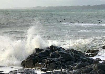 Manu Bay surfers, Raglan