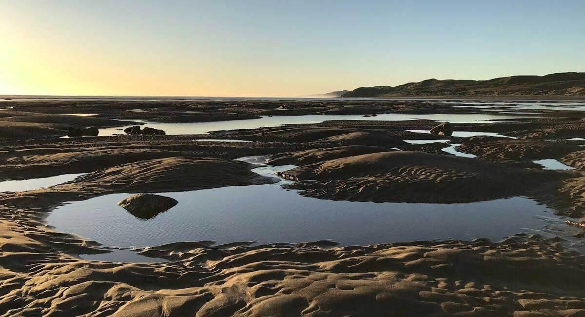 Raglan tide pools