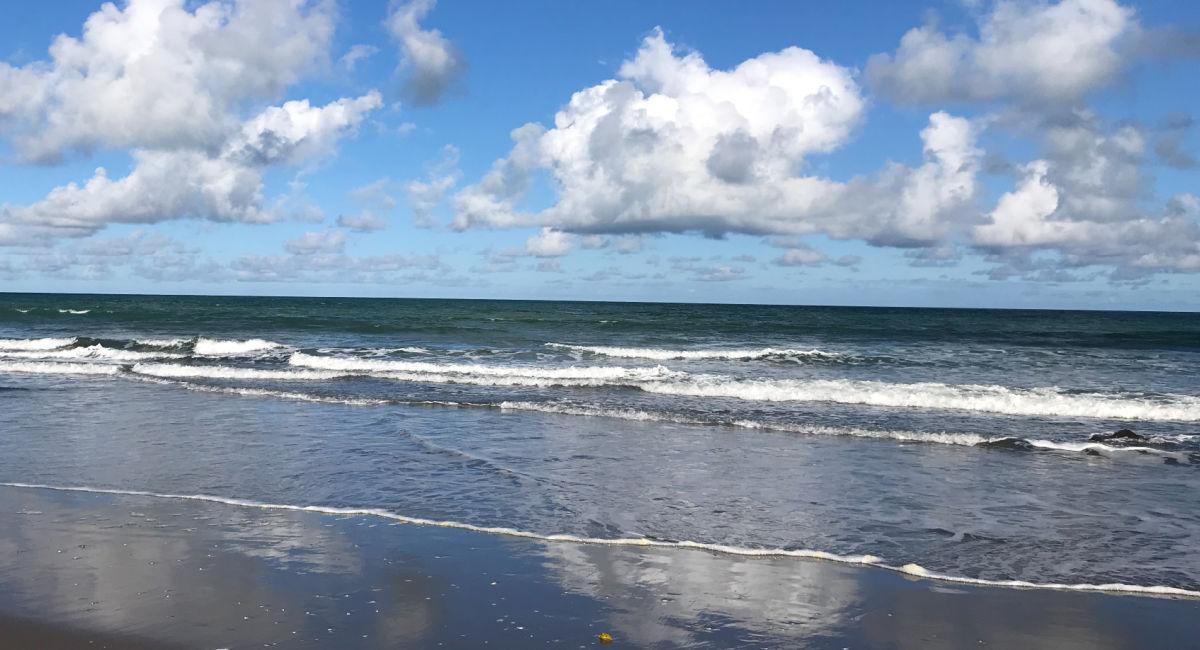 Ngaranui Beach Raglan